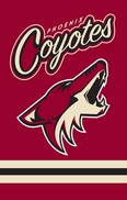 Arizona Coyotes Flags & Outdoors