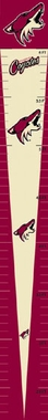 Arizona Coyotes Growth Chart