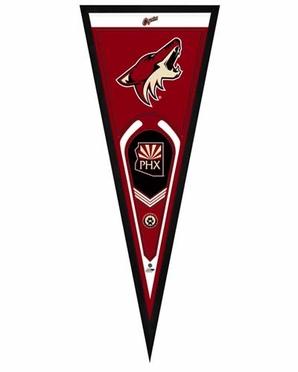 "Arizona Coyotes Pennant Frame - 13"" x 33"" (No Glass)"