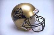 University of Pitt Hats & Helmets