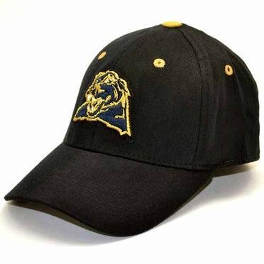 Pitt Youth FlexFit Hat