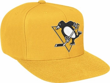 Pittsburgh Penguins Basic Logo Snap Back Hat