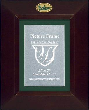 South Florida BROWN Portrait Picture Frame