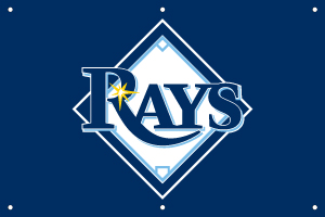 Tampa Bay Rays 2 x 3 Horizontal Applique Fan Banner