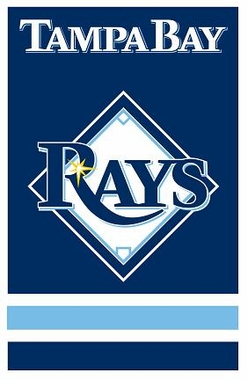 Tampa Bay Rays Applique Banner Flag