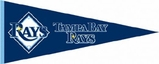 Tampa Bay Rays Merchandise Gifts and Clothing
