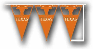 Texas 25 Foot String of Party Pennants (P)