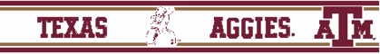 Texas A&M 5.5 Inch (Height) Wallpaper Border