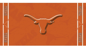 Texas Beach Towel