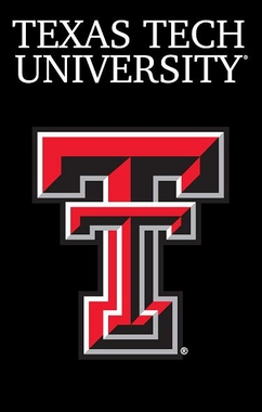 Texas Tech Applique Banner Flag