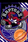 Toronto Raptors Flags & Outdoors