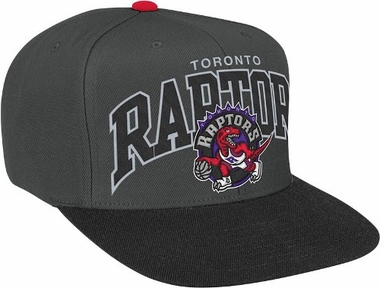 Toronto Raptors Arch Logo Charcoal Snap Back Hat