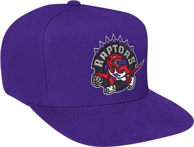 Toronto Raptors Basic Logo Snap Back Hat