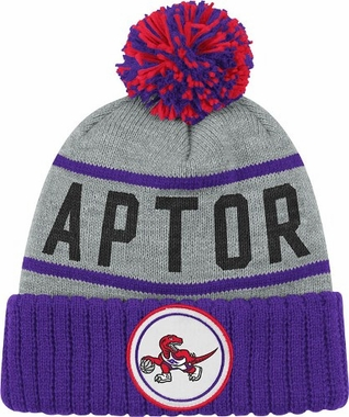 Toronto Raptors High 5 Vintage Cuffed Pom Hat