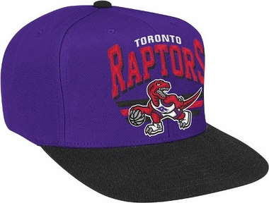 Toronto Raptors Stadium Throwback Snapback Hat