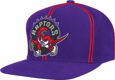 Toronto Raptors ThrowBack Double Soutache Snap Back Hat