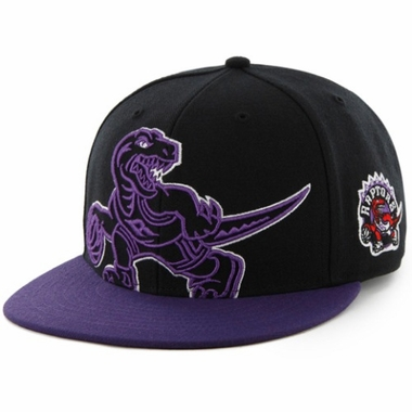 Toronto Raptors Two Tone Colossal Snap Back Hat