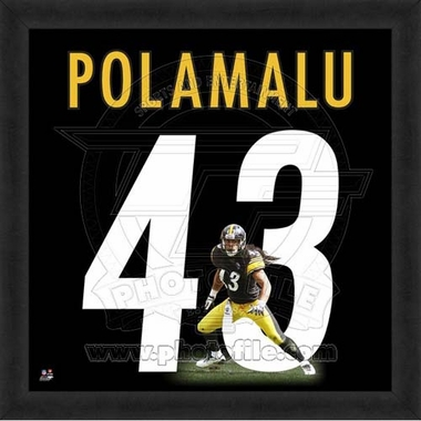 "Troy Polamalu, Steelers 20"" x 20"""
