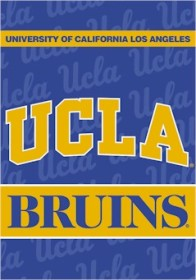 UCLA 2 Sided Banner (P)