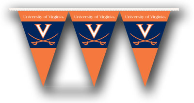 Virginia 25 Foot String of Party Pennants (P)