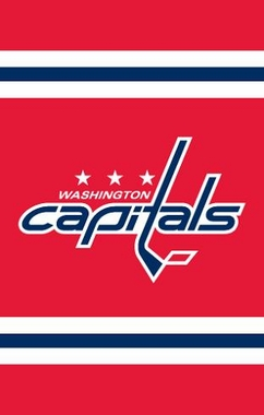 Washington Capitals Applique Banner Flag