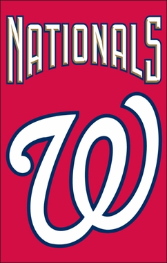 Washington Nationals Applique Banner Flag