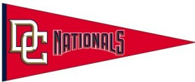 Washington Nationals Wool Pennant