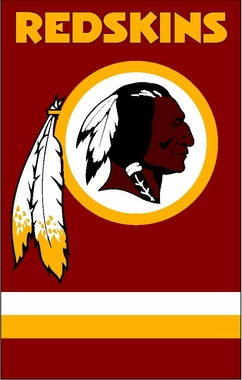 Washington Redskins Applique Banner Flag