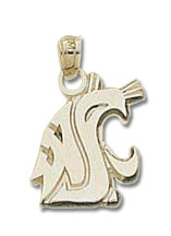 Washington State 10K Gold Pendant