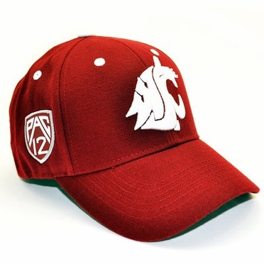 Washington State Triple Conference Adjustable Hat