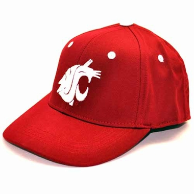 Washington State Youth FlexFit Hat