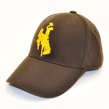 Wyoming Team Color Premium FlexFit Hat