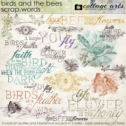 Birds and the Bees Scrap.Words