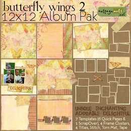 Butterfly Wings 2 12x12 Album Pak