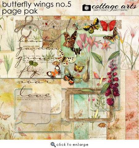 Butterfly Wings 5 Page Pak