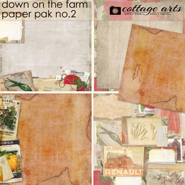 Down on the Farm 2 Paper Pak