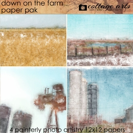 Down on the Farm Paper Pak