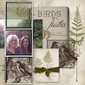 Feathered Ferns Brushes & Stamps