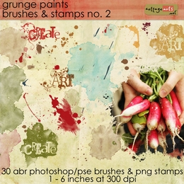 Grunge Paints 2 Brush & Stamp Set