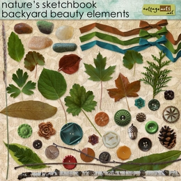 Nature's Sketchbook Backyard Beauty Elements