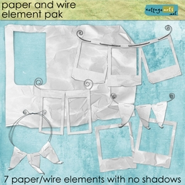 Paper and Wire Element Pak