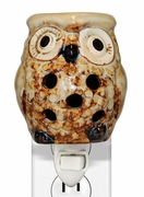 HOOT OWL PLUG IN WARMER  by A Cheerful Giver