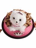 Pom-Pom Puppies: Make Your Own Adorable Dogs
