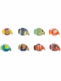 Rainbow Reef Guppy Pool and Bath Toy