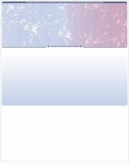 DocuGard® Laser Prismatic Blue/Red 24# Check Stock - Check On Top