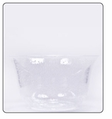 Clear Plastic Bowl - Small- Clear