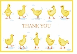 Fine Stationery Note Cards Ducks
