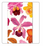 Long Matches Set of 3 - Orchid