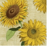 Paper Napkins Lunch Sunflower