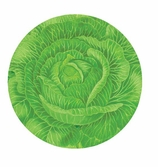 Paper Plates Dinner Cabbage